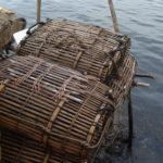 Paniers de crabes, Kep, Cambodge
