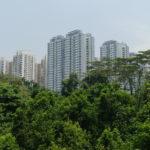 Forest walk, Mount Faber Park, Singapour