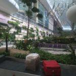 Arrivée des bagages, Aéroport de Singapour, Singapour
