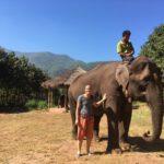Mahout sur son éléphant, Green Hill valley, Kalaw, Myanmar