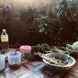 Top 5 food du Myanmar