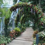 Arches fleuries, Aéroport de Singapour, Singapour